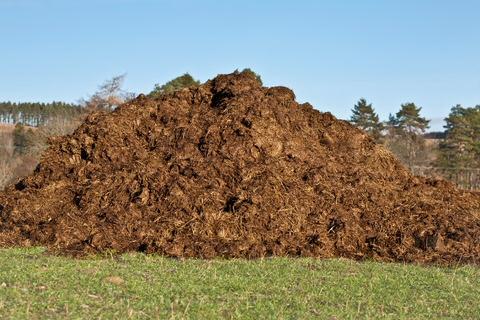 Pferdemist im Winter kompostieren